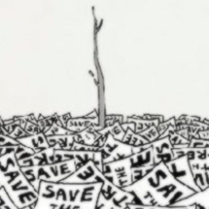 Сохраним деревья