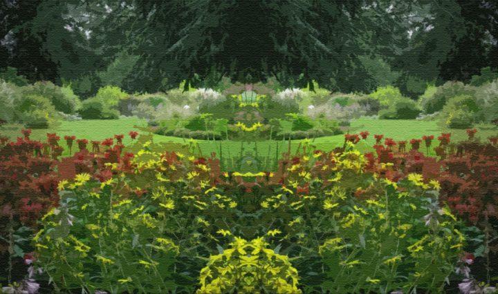 Чудесный сад