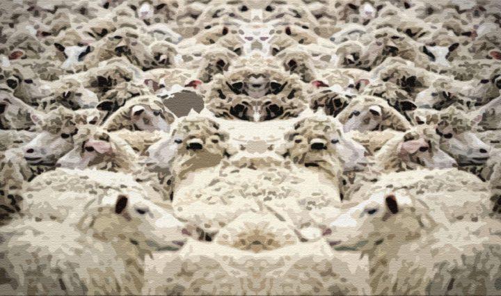 Навои и пастух