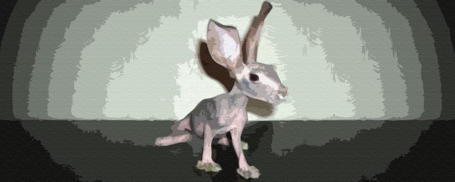 Упрямый зайчонок