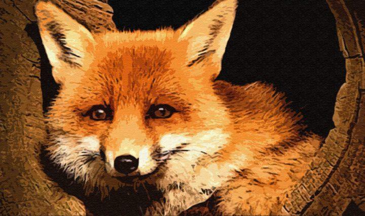 Как звери лису судили