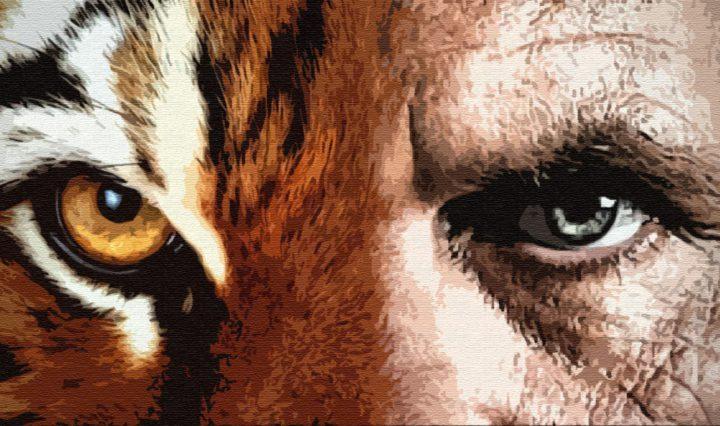 Тигр и человек