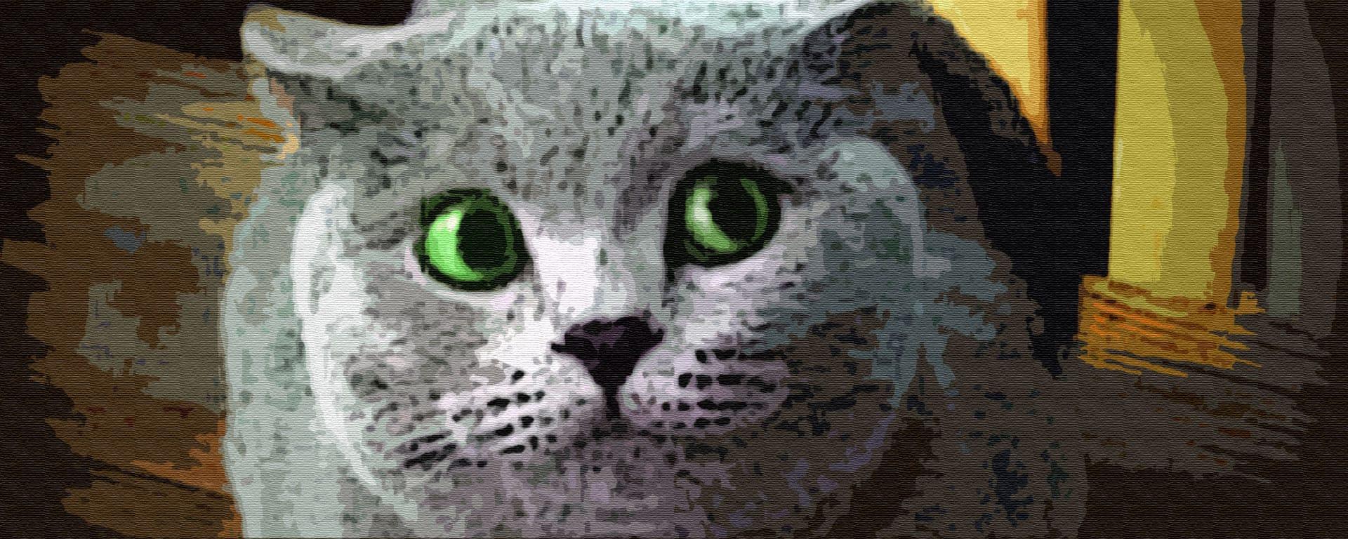 Озорной кот