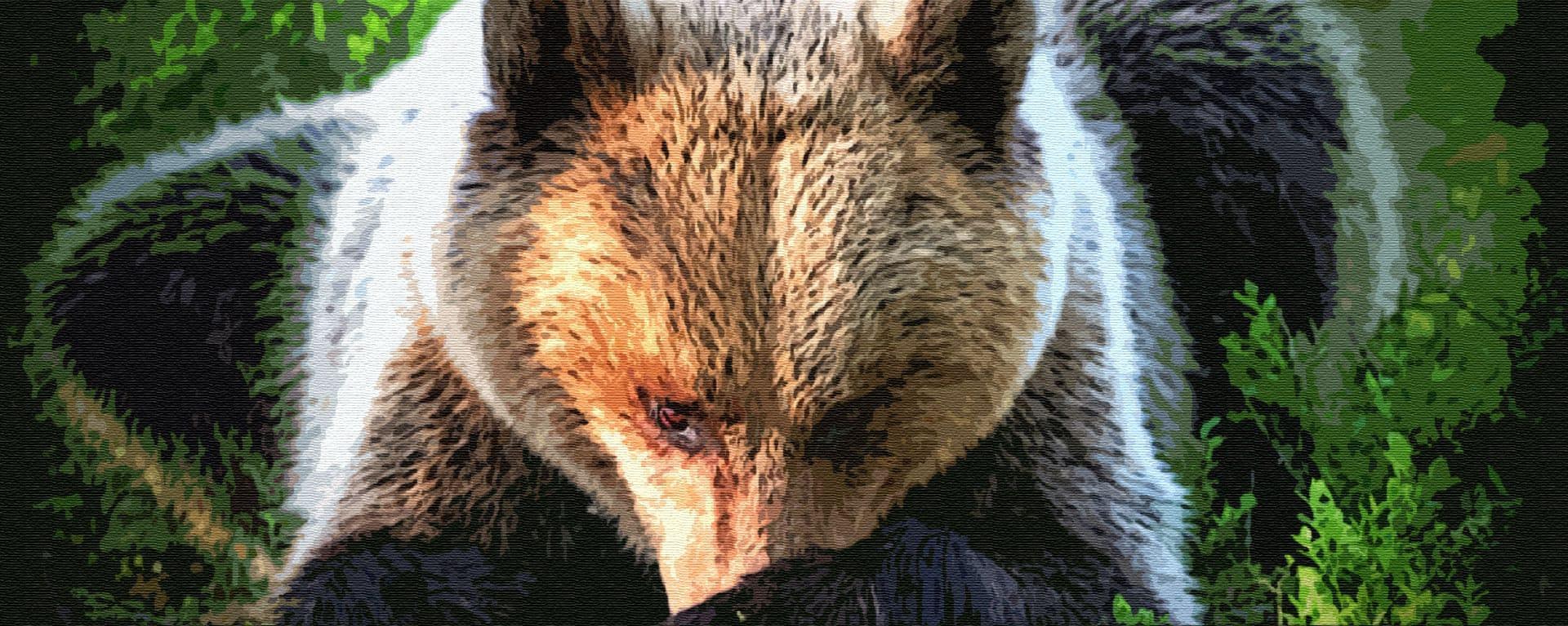 Старик и медведь