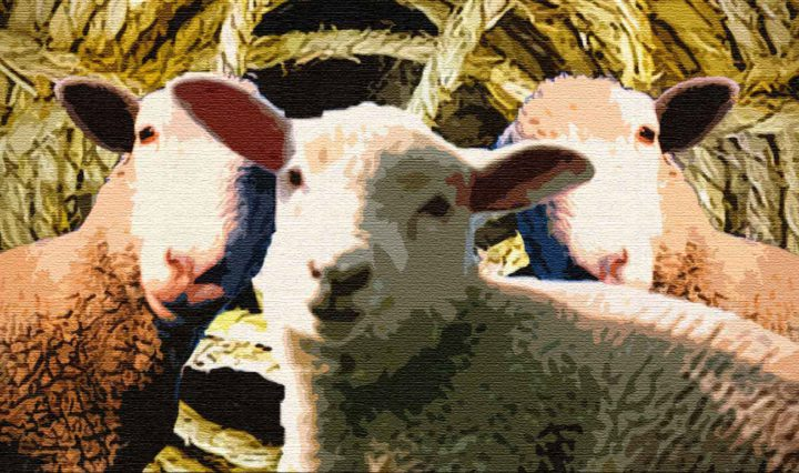 Умный Бадма и глупый лама