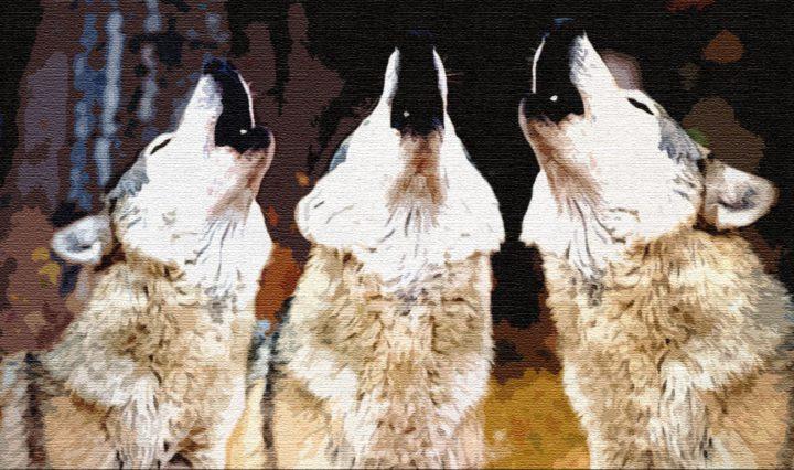 Отчего волки воют